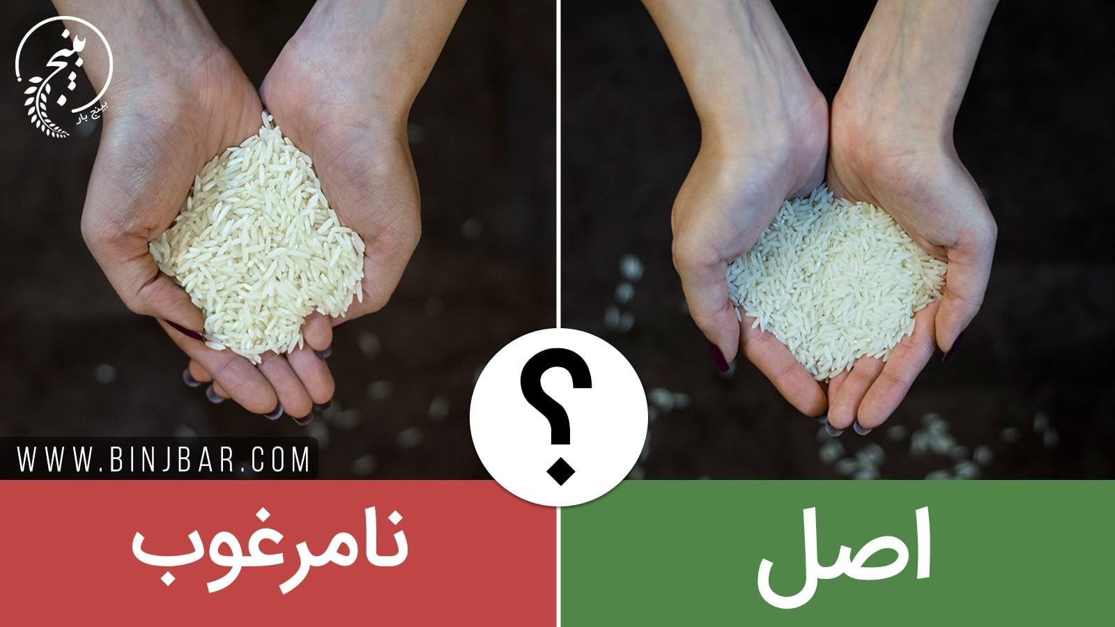 نحوه ی تشخیص برنج ایرانی مرغوب + عکس